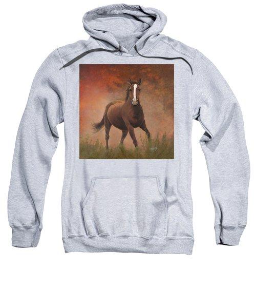 Early Morning Light Sweatshirt