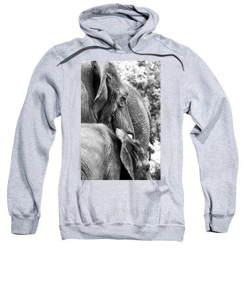 Elephant Ears Sweatshirt