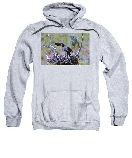 Flight School  Sweatshirt