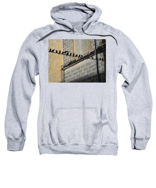 Florentine Pigeons Sweatshirt