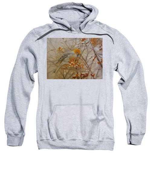 Generous Provision Sweatshirt