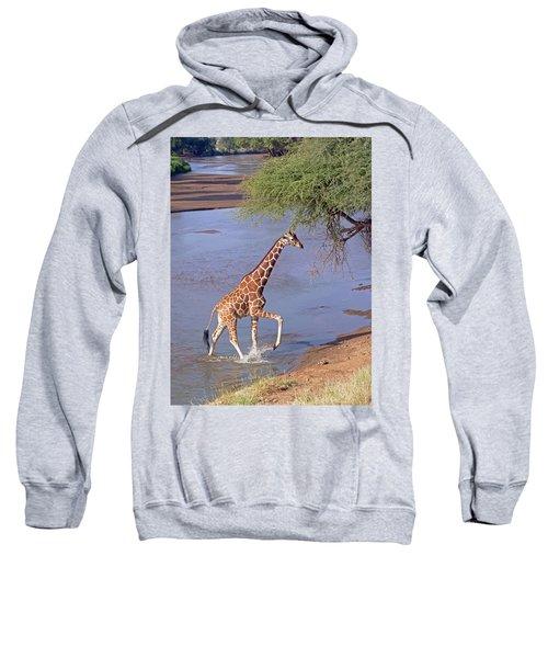 Giraffe Crossing Stream Sweatshirt