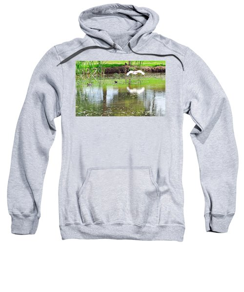 Ibis Over His Reflection Sweatshirt