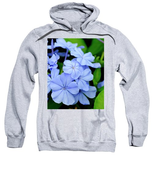 Imperial Blue Sweatshirt