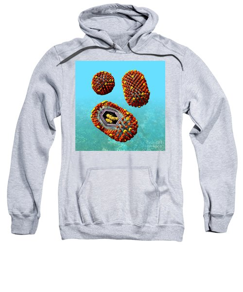 Influenza Virus Scene 1 Sweatshirt