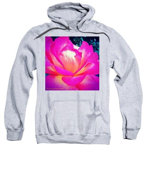 Lady Diana Rose Sweatshirt