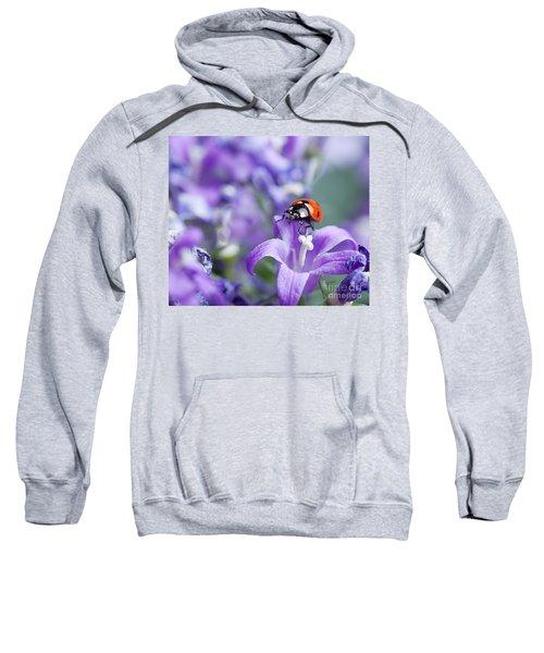 Ladybug And Bellflowers Sweatshirt