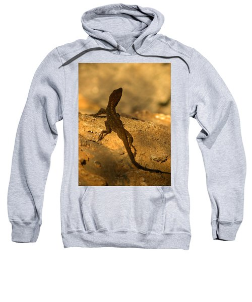 Leapin' Lizards Sweatshirt