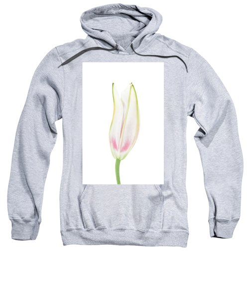 Lily In The Snow Sweatshirt