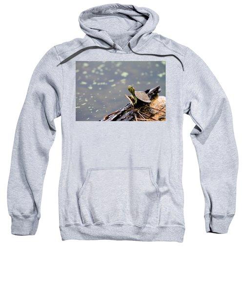 Little Guy Sweatshirt