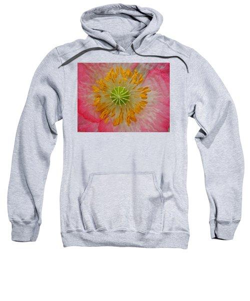Macro Mystery Sweatshirt