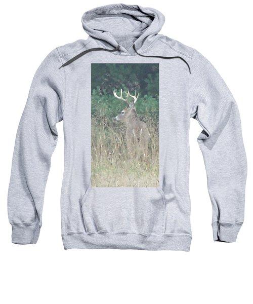Majestic Buck Sweatshirt