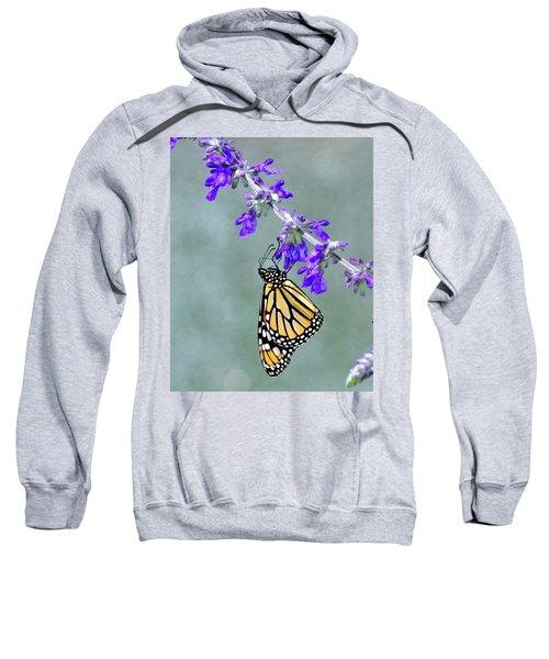 Monarch On Purple Sweatshirt