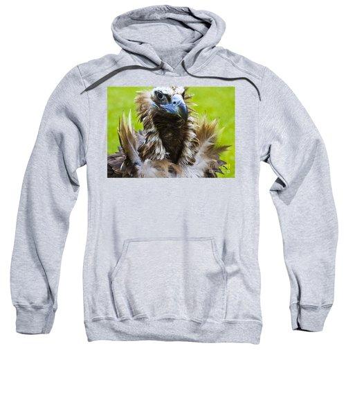Monk Vulture 4 Sweatshirt by Heiko Koehrer-Wagner