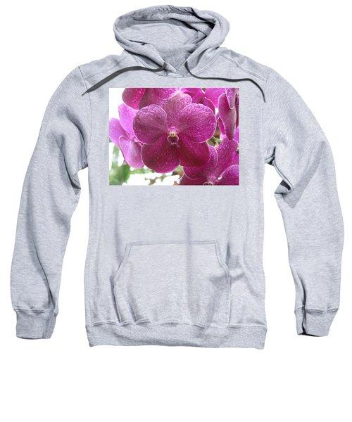 Orchid Cluster Sweatshirt
