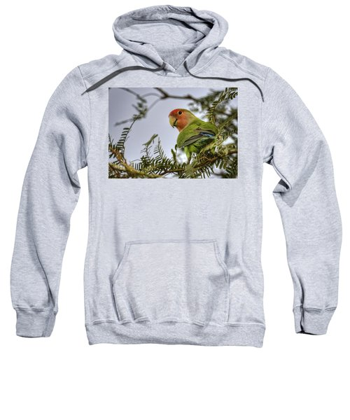 Over My Shoulder  Sweatshirt by Saija  Lehtonen