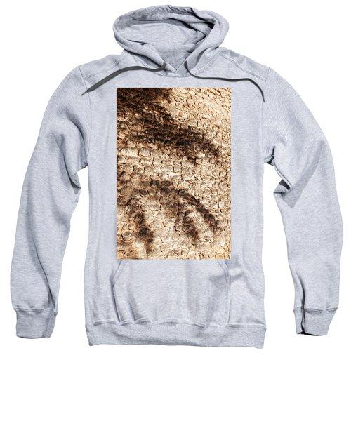 Palm Fragment Sweatshirt
