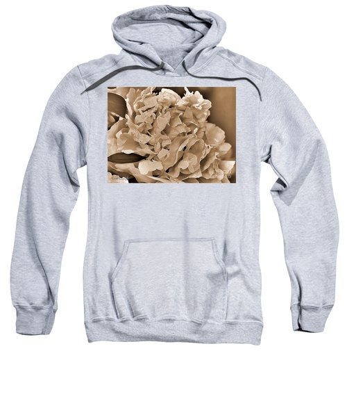Peony Named Shirley Temple Sweatshirt by J McCombie