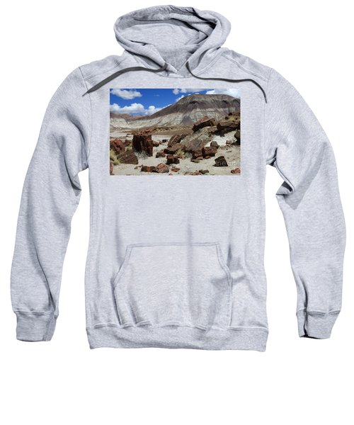 Petrified Forest 2 Sweatshirt