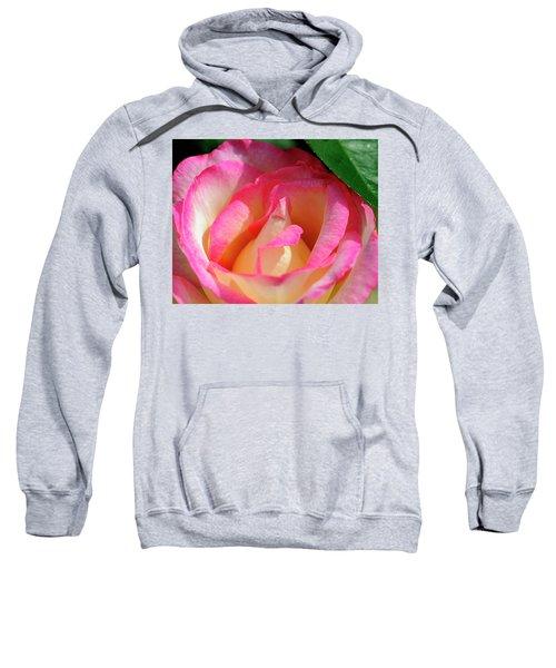 Pink And White Rose Sweatshirt