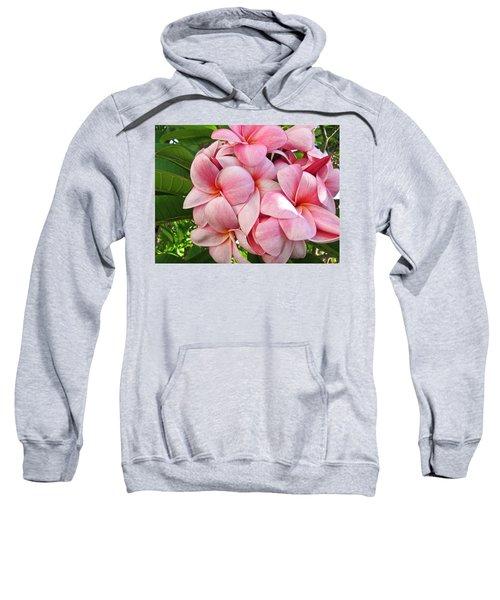 Pink Plumerias Sweatshirt