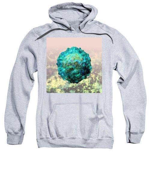 Polio Virus Particle Or Virion Poliovirus 1 Sweatshirt