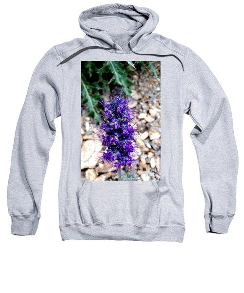 Purple Reign Sweatshirt