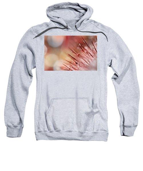 Rainbow Cactus Sweatshirt