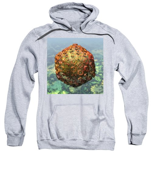 Rift Valley Fever Virus 1 Sweatshirt