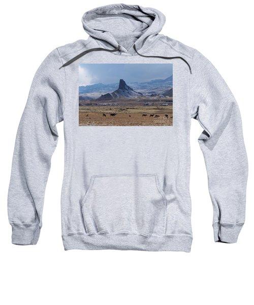 Sentinels Sweatshirt