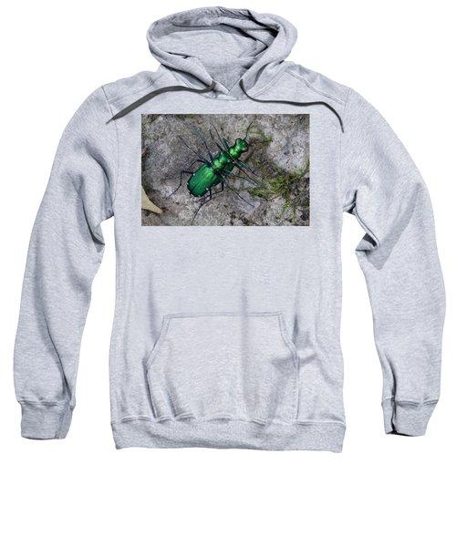 Six-spotted Tiger Beetles Copulating Sweatshirt