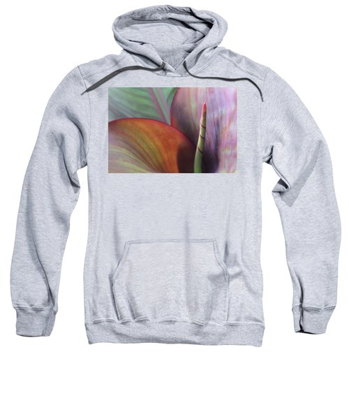 Soft Focus Petal Sweatshirt