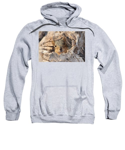 Squirrel Peaking Sweatshirt