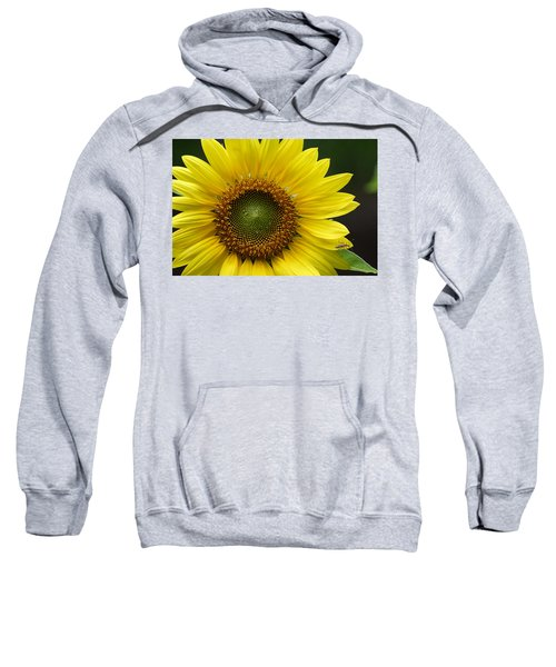 Sunflower With Insect Sweatshirt