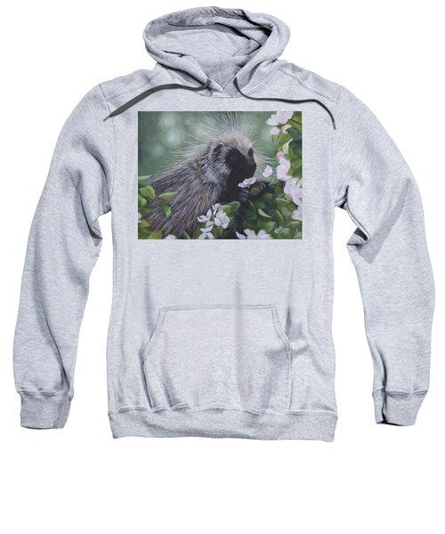 Sweet Treat Sweatshirt