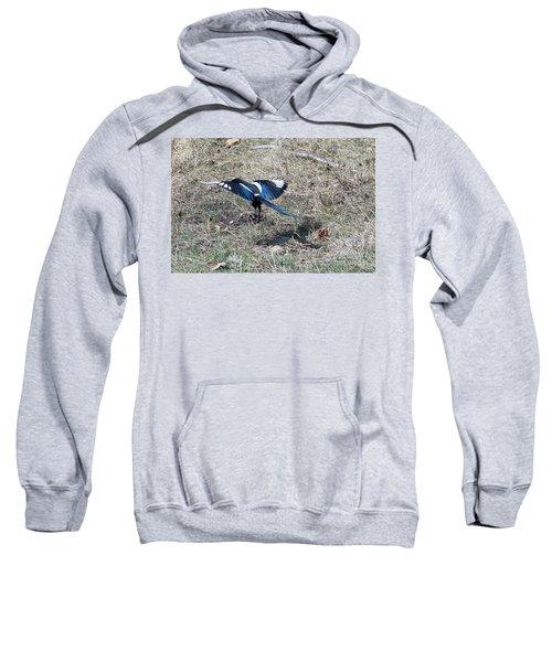 Taking Off Sweatshirt