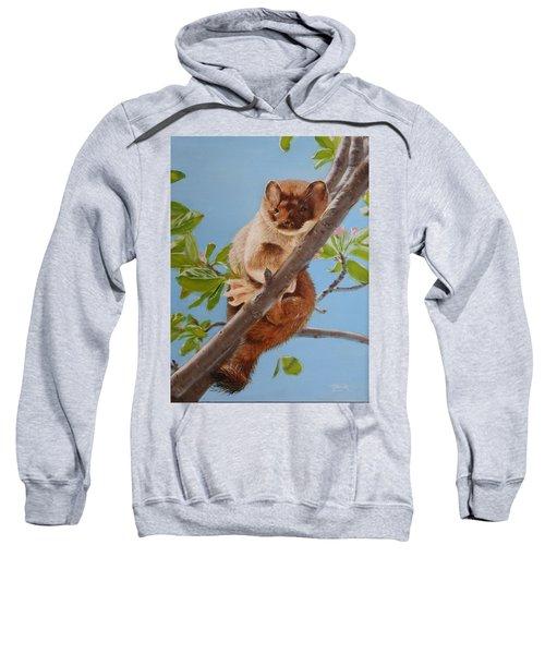 The Weasel Sweatshirt