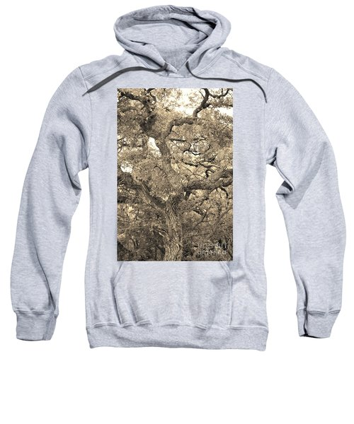 The Wicked Tree Sweatshirt