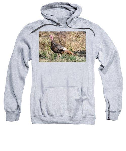 Turkey In The Straw Sweatshirt