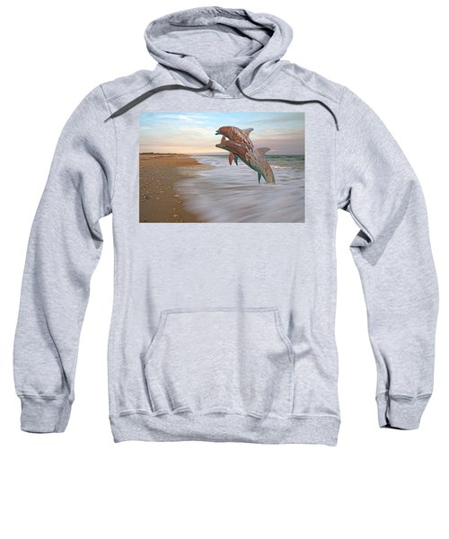 Unknown Thought Sweatshirt