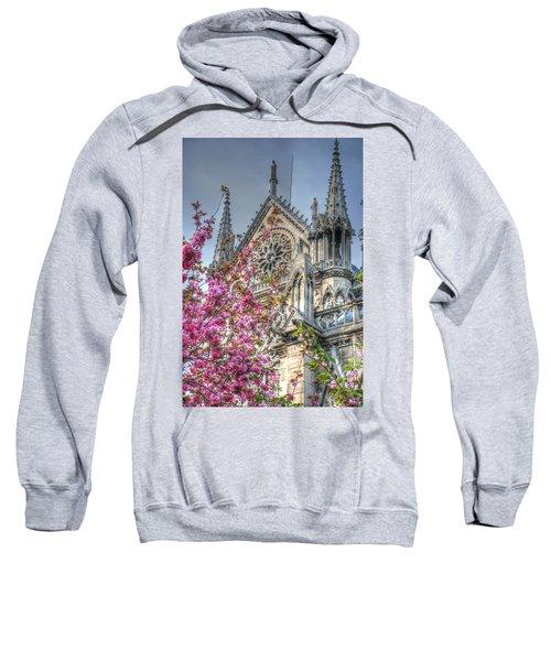 Vibrant Cathedral Sweatshirt