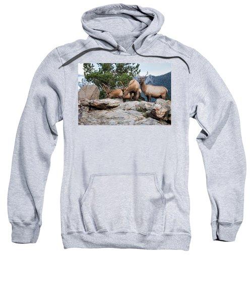 Wapiti Sweatshirt