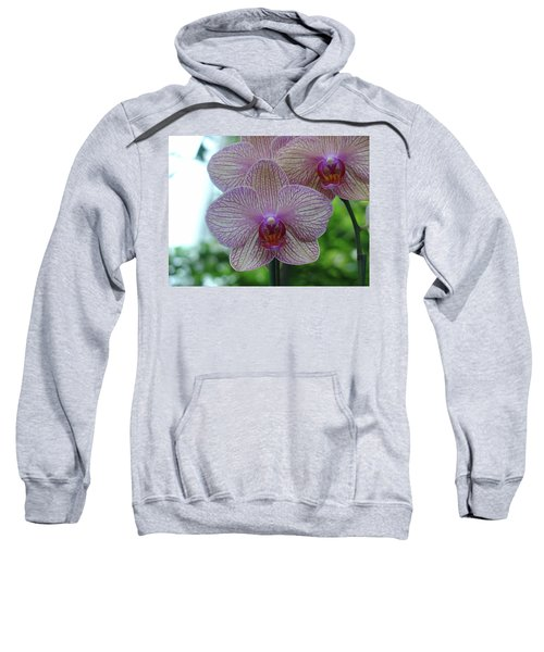 White And Pink Orchid Sweatshirt