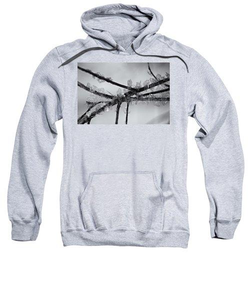 Winters Last Call Sweatshirt