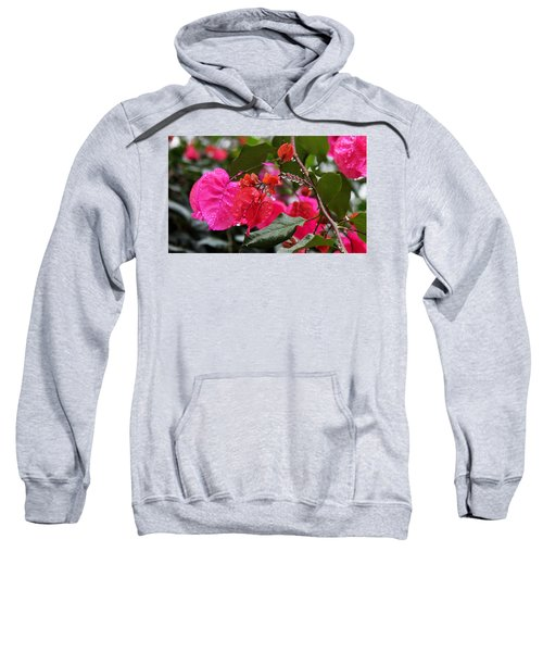 Bougainvillea In The Rain Sweatshirt
