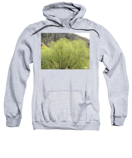 Tree Ute Pass Hwy 24 Cos Co Sweatshirt
