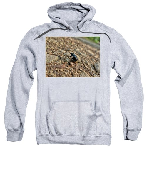 A Insect Named Bracken Clock With Brown Wings Sweatshirt