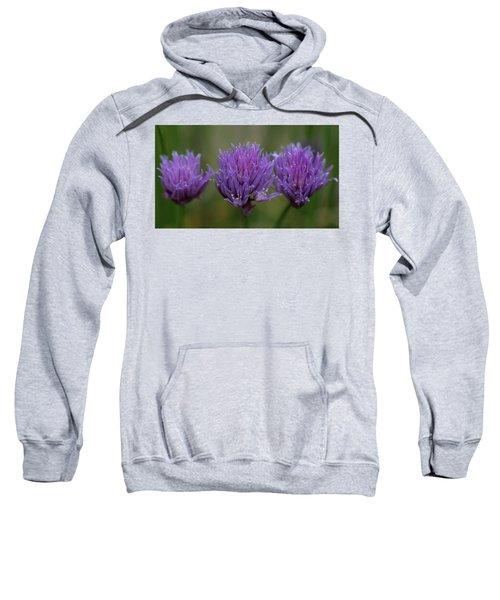 A Taste Of Spring Sweatshirt