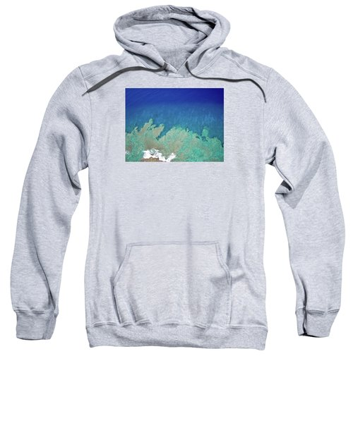 Abstract Aerial Reef Sweatshirt