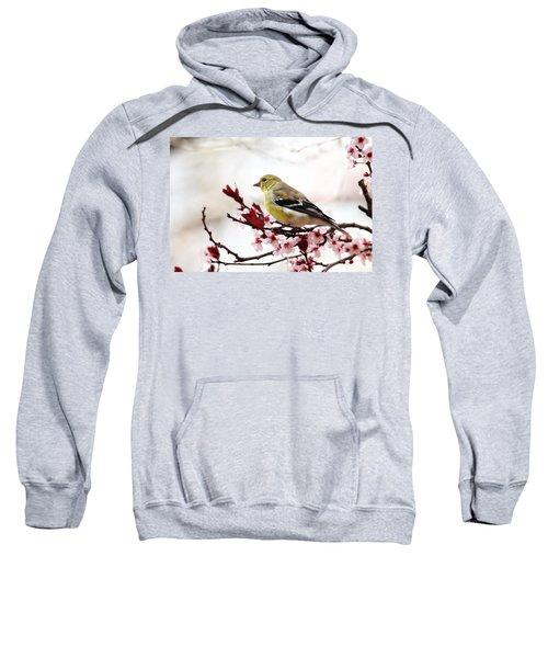 American Goldfinch In Spring Sweatshirt